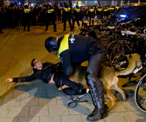 politie en hond
